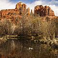 Cathedral Rock Reflections Portrait 1 by Darcy Michaelchuk