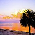 Cedar Key Sunset Print by Shannon Harrington