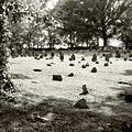 Cemetery At Mud Meeting House by Mark Jordan