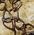 Chain Links by Judi Bagwell