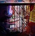Challenge Enigmatic Imprison Himself by Paulo Zerbato