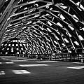 Chatham Dockyard Covered Slip No3 by Dawn OConnor