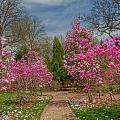 Cheekwood Gardens by Charles Warren