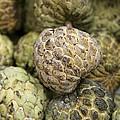 Cherimoya Fruit (annona Cherimola) by Bjorn Svensson