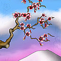 Cherry Blossoms by Anthony Citro