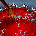 Cherry Bubbles Under Water by Tracie Kaska