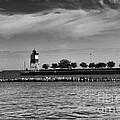 Chicago Lighthouse by Leslie Leda