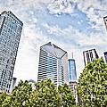 Chicago Skyline At Millenium Park by Paul Velgos