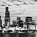 Chicago Skyline at Night Print by Paul Velgos