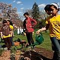 Children From Bancroft Elementary by Everett