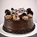 Chocolate Cake by Elena Elisseeva