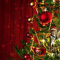 Christmas Tree Detail by Carlos Caetano