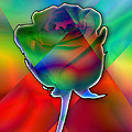 Chromatic Rose by Anthony Caruso