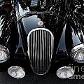 Classic Black Jaguar . 40d9322 by Wingsdomain Art and Photography