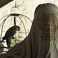 Close-up Of A Woman And A Parakeet - by James L. Stanfield