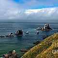 Coastal Look by Robert Bales