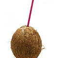 Coconut with a straw Print by Fabrizio Troiani