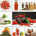 Collage Of Different Colorful Spices For Seasoning by Sandra Cunningham