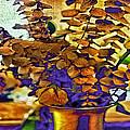 Colored Memories by Madeline Ellis