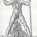 Colossus Of Rhodes, 16th Century Artwork by Middle Temple Library