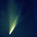Comet West, 1976 by Science Source