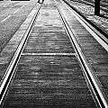 Completed Tram Rails On Princes Street Edinburgh Scotland Uk United Kingdom by Joe Fox