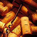 Corkscrew And Wine Corks by Garry Gay