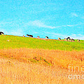 Cows On A Hill . 40d3430 . Painterly by Wingsdomain Art and Photography