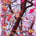 Crisp Autumn Day by Judi Bagwell