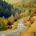 Curve Mountain Road With Autumn Trees by Utah-based Photographer Ryan Houston