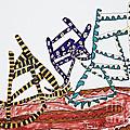 Dancing Chairs by Stephanie Ward