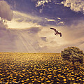 Daydream by Lourry Legarde
