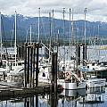 Deep Bay Harbor by Artist and Photographer Laura Wrede