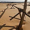 Desolate by Heather Applegate