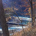 Devils Den State Park Creek by Patty Vicknair