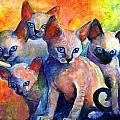 Devon Rex kittens Print by Svetlana Novikova
