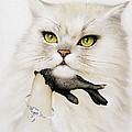 Domestic Cat, Conceptual Image by Smetek