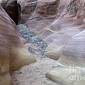 Dry Creek Bed 3 by Bob Christopher