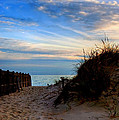 Dunes on the Cape Print by Joann Vitali