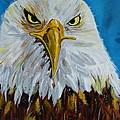 Eagle by Ismeta Gruenwald