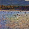 Early Morning Color of Lake Wilhelmina-Arkansas Print by Douglas Barnard