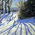Early Snow Darley Park by Andrew Macara