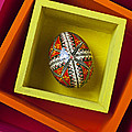 Easter Egg In Box by Garry Gay