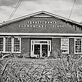 Elementary School by Scott Pellegrin