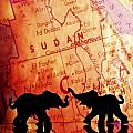Elephant Silhouettes In Front Of A Map by Chris Knorr