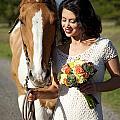 Equine Companion by Sri Maiava Rusden