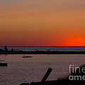 Evening Harbor Silhouette Print by Douglas Armstrong