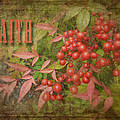 Faith Spring Berries by Cindy Wright