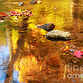 Fall Color In Stream by Charline Xia