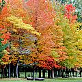Fall In Michigan by Optical Playground By MP Ray
